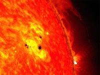 Sunspot observed by the Solar Dynamics Observatory in February 2013