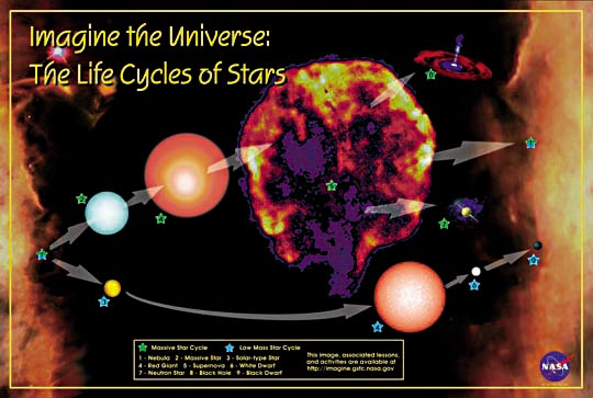 Brown Dwarfs in addition Important Vocabulary Diploid Haploid Somatic Cell Gamete Diploid together with Lego Star Wars Largest Xwing furthermore Politics as well Lc Life Cycles. on life cycles of stars